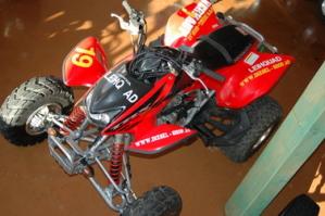 Honda Quad mieten